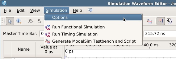 assign simulation options